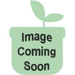 "Peerless Stove BJK5X0BP 24"" Sealed Black Gas Range"