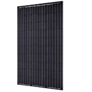 QCell 250 Watt Poly Solar Panel Black on White